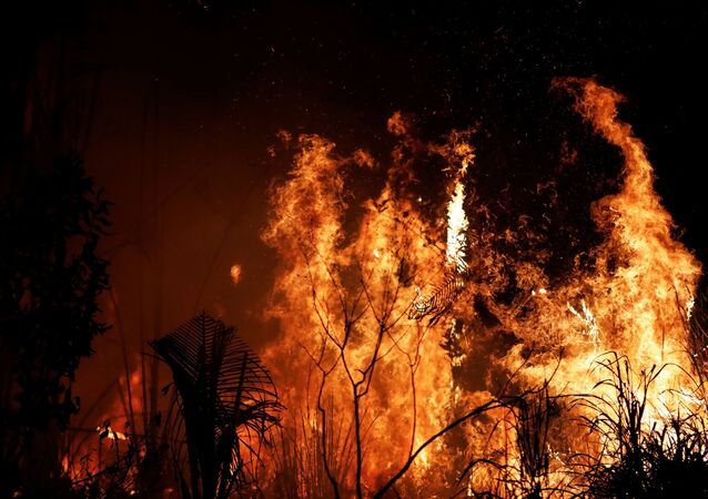 Tropik ormanlarını yok eden Amazon'daki yangınlar.