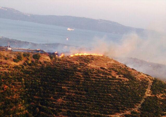 Balıkesir'in Erdek ilçesi Oduncuyolu mevkisindeki çıkan orman yangını kontrol altına alındı.