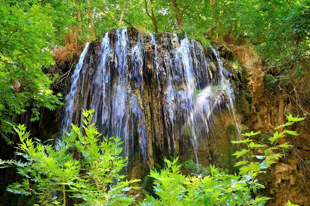 Endemik olan bitkilerden gûni ve Mardin geveni Diyarbakır, Mardin ve Siirt çevresinde yetişir. Gelîyê Godernê'ye özgü hiro, yani hatmi de endemik türlerdendir. Bunlar dışında gûni, sahlep, orkide, peygamber çiçeği (Centaurea kurdica), koksor da yöreye özgü endemik türler arasında bulunuyor.