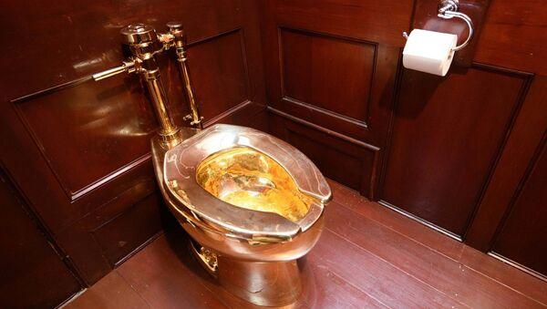 İngiltere'de eski Başbakan Winston Churchill'in doğduğu saraydan değeri 5 milyon doları geçen altın klozetin çalındığı belirtildi - Sputnik Türkiye