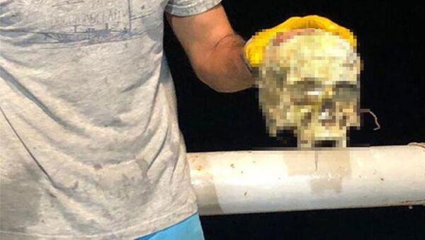 Akdeniz Üniversitesi Su Ürünleri Fakültesi tarafından her ay yapılan dip trol örneklemesi çalışması sırasında trol ağlarına takılan insan kafatası, Sahil Güvenlik Komutanlığı'na teslim edildi. - Sputnik Türkiye