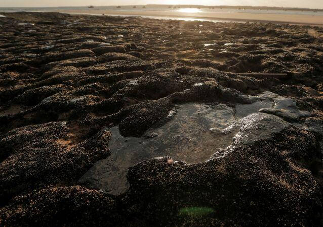 Brezilya'nın kuzeydoğu kıyılarında eylül ayının başından beri devam eden petrol sızıntısı
