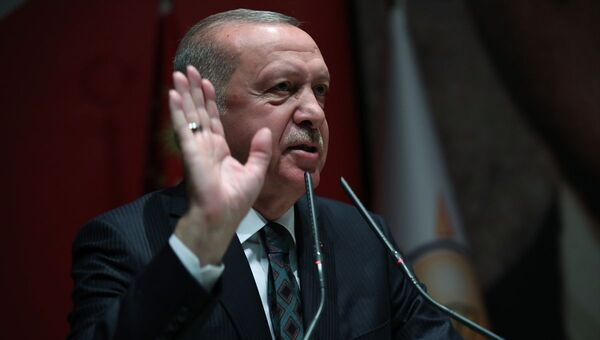 Recep Tayyip Erdoğan - tepkili - Sputnik Türkiye