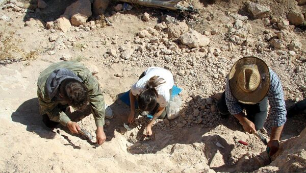 Kayseri'de 8 milyon yıllık yeni fosiller bulundu - Sputnik Türkiye