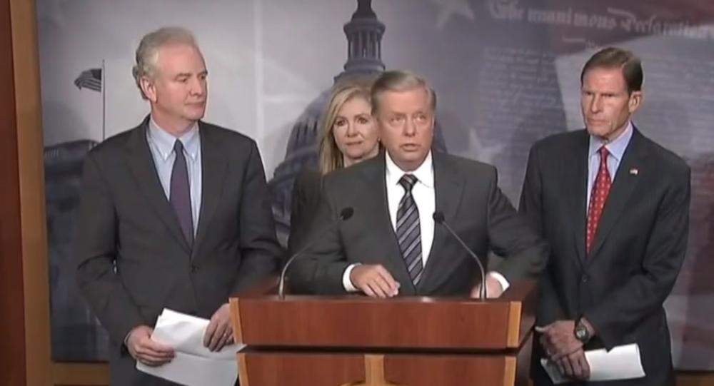 ABD'li Cumhuriyetçi Senatör Lindsey Graham veDemokrat Senatör Chris Van Hollen