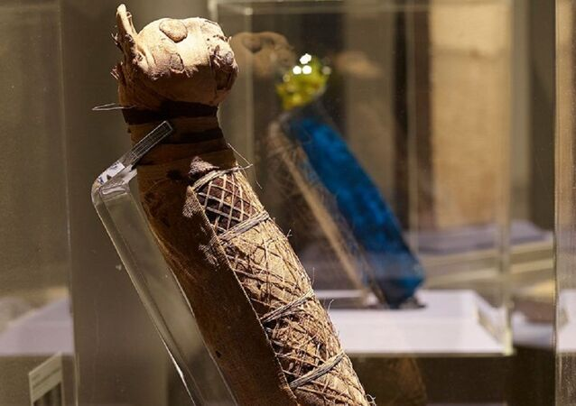 Fransız bilim insanlarının 2500 yıllık antik Mısır kedi mumyasının içinde neler olduğunu öğrenmeyi başardığı belirtildi.