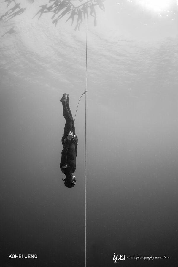 2019 Uluslararası Fotoğraf Ödülleri Yarışmasının kazananları - Sputnik Türkiye