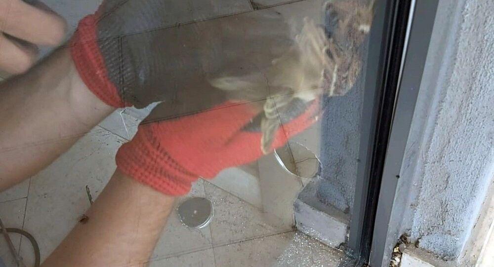 Antalyaspor'un Atilla Vehbi Konuk Tesisleri'ndeki çift katlı camdan oluşan kapının içine sıkışan iki serçe kuşu, kulüp personelince kurtarıldı.