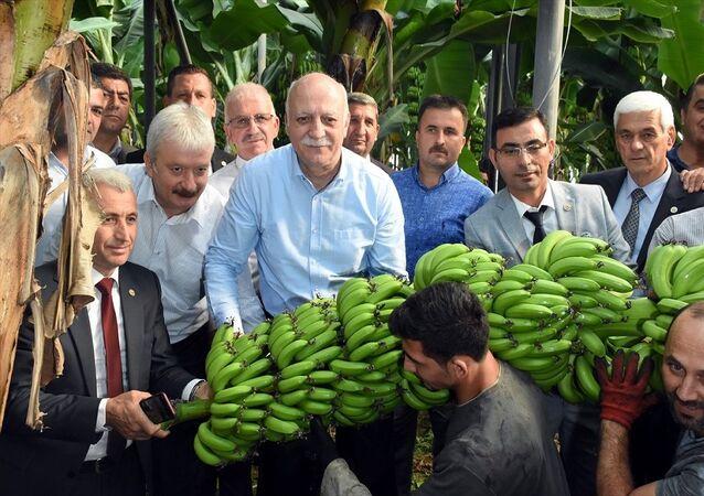 Türkiye Ziraat Odaları Birliği (TZOB) Başkanı Şemsi Bayraktar (sağda), muz, narenciye ve domates hasadı için geldiği Antalya'nın Alanya ilçesinde Alanya Ziraat Odası'nı ziyaret etti.