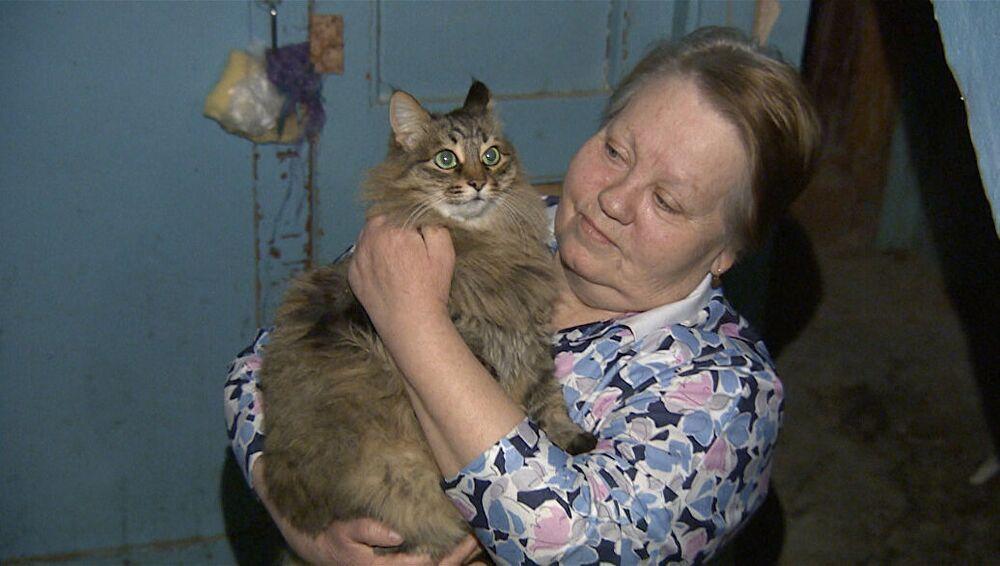 Rusya 'nın Kaluga bölgesindeki Obninsk şehrinde terk edilen bebeği ölümden kurtaran sokak kedisinin hikayesi, herkesi çok etkiledi. Rus basınında yer alan habere göre, Obninsk şehrindeki bir apartmanın sakinleri, bir kedinin acı acı miyavladığını duydu. Sesin nereden geldiğini anlamaya çalışan sakinler, apartman boşluğundaki kediyi fark ettiler. Daha sonra kedinin bulunduğu yere giden apartman sakinleri, burada bir de bebekle karşılaştı. Bebeğin kedi tarafından çevrelendiği fark edilirken, kedinin yaptığı asıl fedakarlık ise sonra ortaya çıktı. Masha adlı kedinin, bir kutunun içine bırakılan bebeği saatlerce hayatta tuttuğu anlaşıldı. Havanın eksilerde seyrettiği apartman boşluğunda bu fedakar kedi, bebeği ısıtmak için uzun süre uğraş vermişti. Donmakta olan bebeği çevreleyerek donmasını önleyen kedi, ağladığı zamanlarda da onu sakinleştirmek için de yüzünü yaladı. Sadece 2,5 aylık olduğu ortaya çıkan bebek hastaneye götürülerek sağlık kontrollerinden geçirildi. Temiz kıyafetler ve bir paket bebek bezi ile soğuğa bırakılan bebeğin saatlerce dondurucu soğukta kalmış olmasına rağmen gayet sağlıklı olması herkesi şaşırttı. Apartman sakinleri tarafından beslenen Masha ise  Rusya'nın yeni kahramanı oldu.