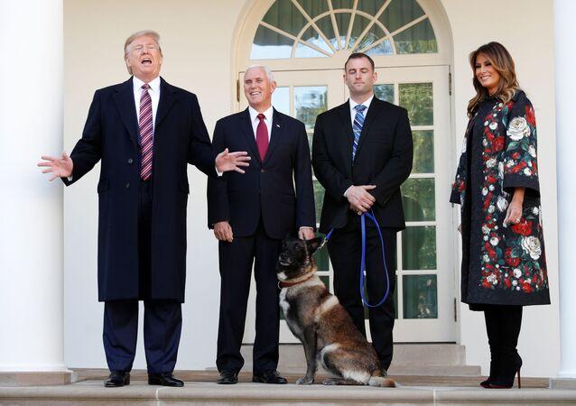 Trump'tan Bağdadi operasyonunda görevli köpeğe plaket ve madalya
