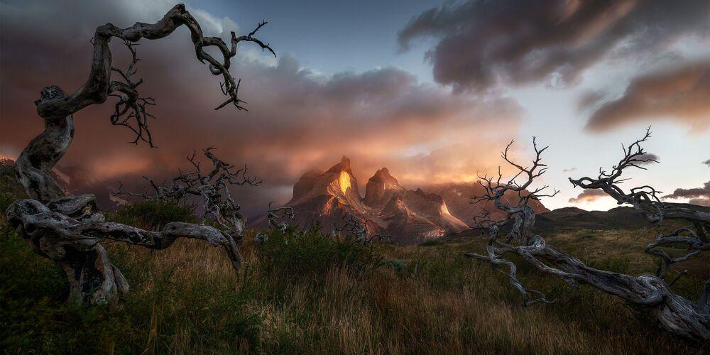 Şili'deki Torres del Paine Milli Parkı'nı fotoğraflayan Avustralyalı Danny Tan,  Solitude fotoğrafıyla Nikon Ödülü'nün galibi oldu.