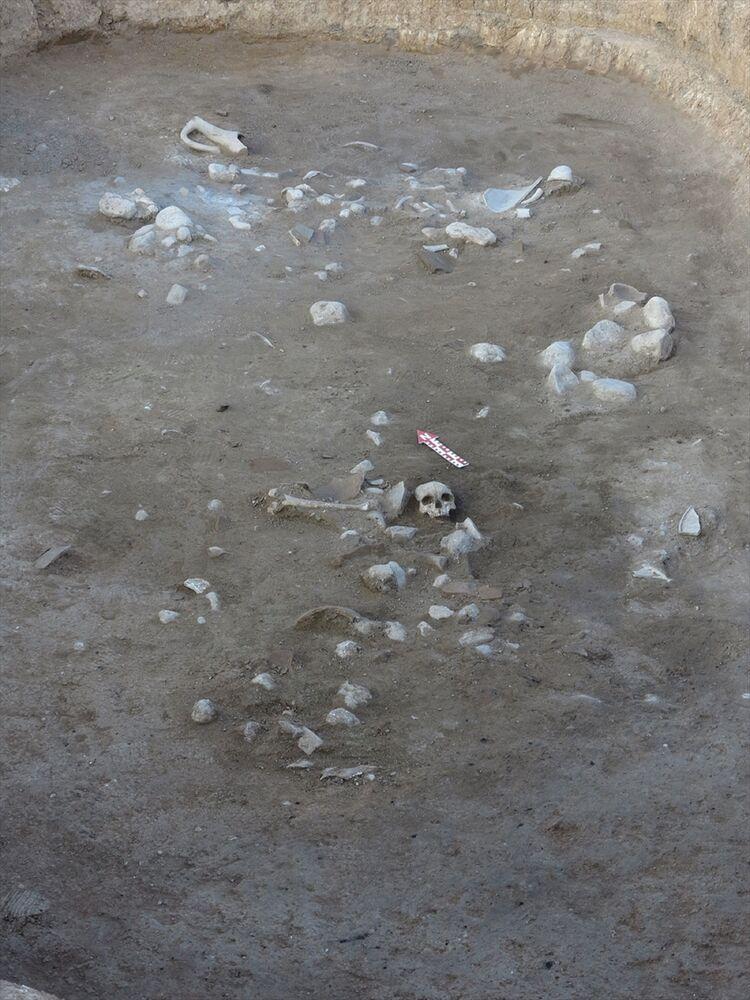 Kazı sırasında önemli bir keşif yaptıklarını vurgulayan Prof. Dr. Süel, Hitit dönemine ait dolgu içinde insan kafatasına ve sol femur (uyluk) kemiğine rastladık. Bu çok önemli bir buluntu. Bunlar bize, Hitit bilimine ve Hitit dünyasına çok şey kazandıracak dedi.