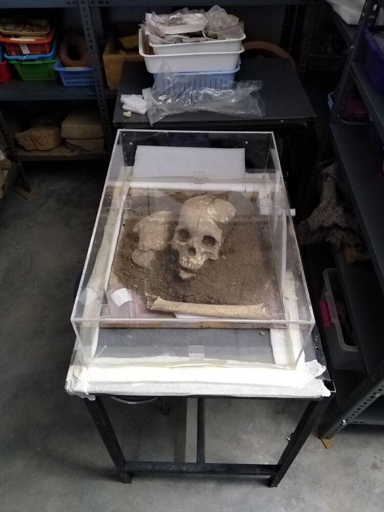 Aygül Süel, 3500 yıllık olduğu değerlendirilen kafatası ve kemiğin Hitit Üniversitesi Antropoloji Bölümü'nde incelendiğini de kaydetti.