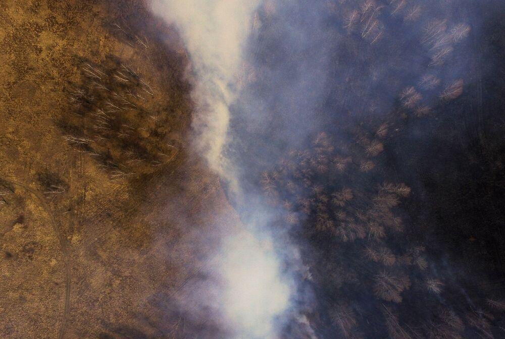 Rusya'nın Kemerovo bölgesini etkisi altına alan orman yangını.