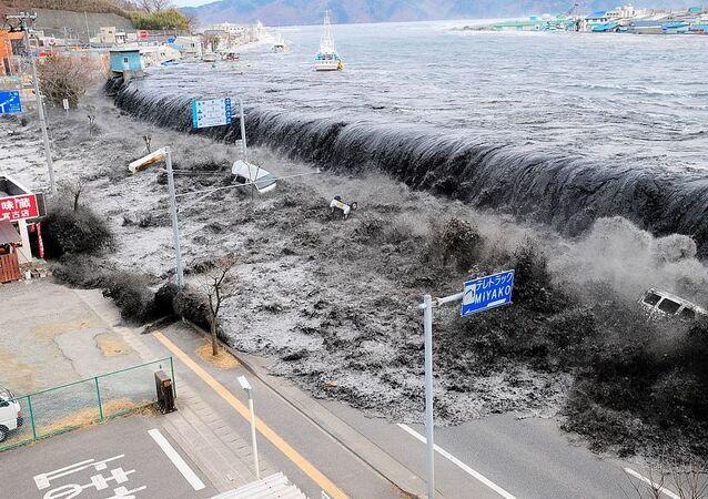 Devasa dalga 11 Mart 2011'de Japonya'nın Miyako bölgesinde 9 büyüklüğündeki depremin ardından meydana geldi.  Deprem ülke tarihine en güçlü dördüncü deprem olarak geçti. Deprem sonrası yaşanan tsunami ise Fukuşima Nükleer Santrali faciasına sebep oldu.  Nükleer kaza 1986 yılındaki Çernobil felaketinden sonra en etkili nükleer kaza olarak kayıtlara geçti.