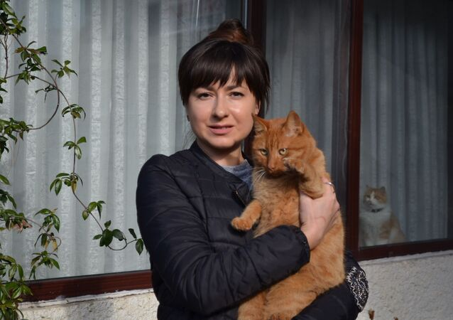 Tekirdağ'ın Süleymanpaşa ilçesinde kimliği belirsiz kişiler Rusya uyruklu bir kadının evinde beslediği kedilere ciğere zehir karıştırıp yedirdi.
