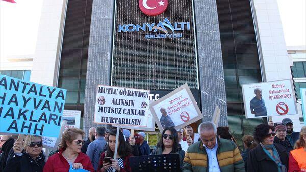 Antalya'da bir grup hayvansever, Konyaaltı Belediyesi bünyesindeki hayvan bakımevinde köpeklerin öldürüldüğünü ileri sürerek, protesto düzenledi. - Sputnik Türkiye