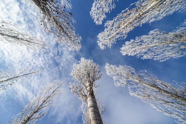 Tunceli'nin Ovacık ilçesinde, kar yağışının ardından etkili olan soğuk hava hayatı olumsuz etkiliyor. - Sputnik Türkiye