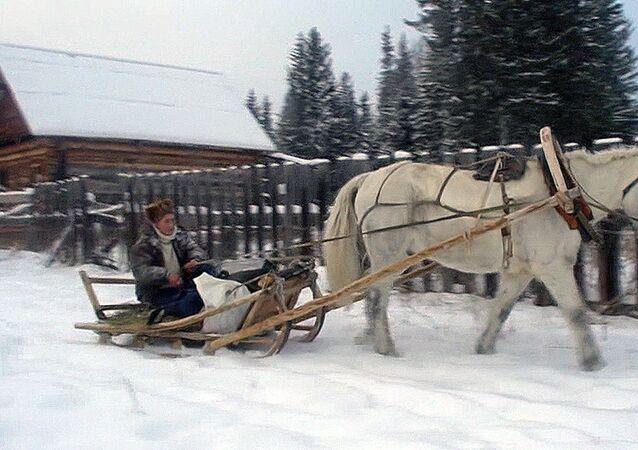 Sibirya'nın uzak bölgelerinde postacı nasıl çalışıyor?