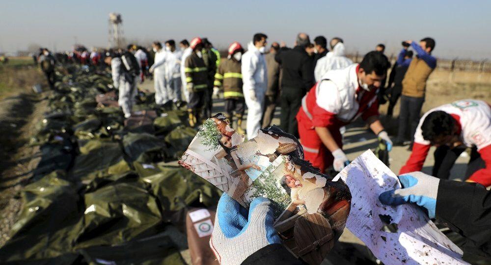 İran'ın düşürdüğü Ukrayna Havayolları'na ait yolcu uçağı