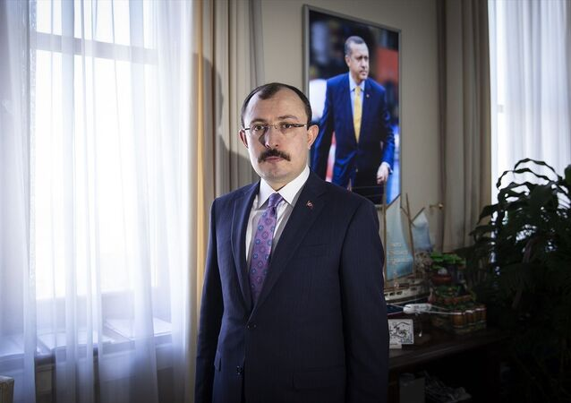 AK Parti Grup Başkanvekili Mehmet Muş, TBMM'de AA muhabirine açıklamalarda bulundu.