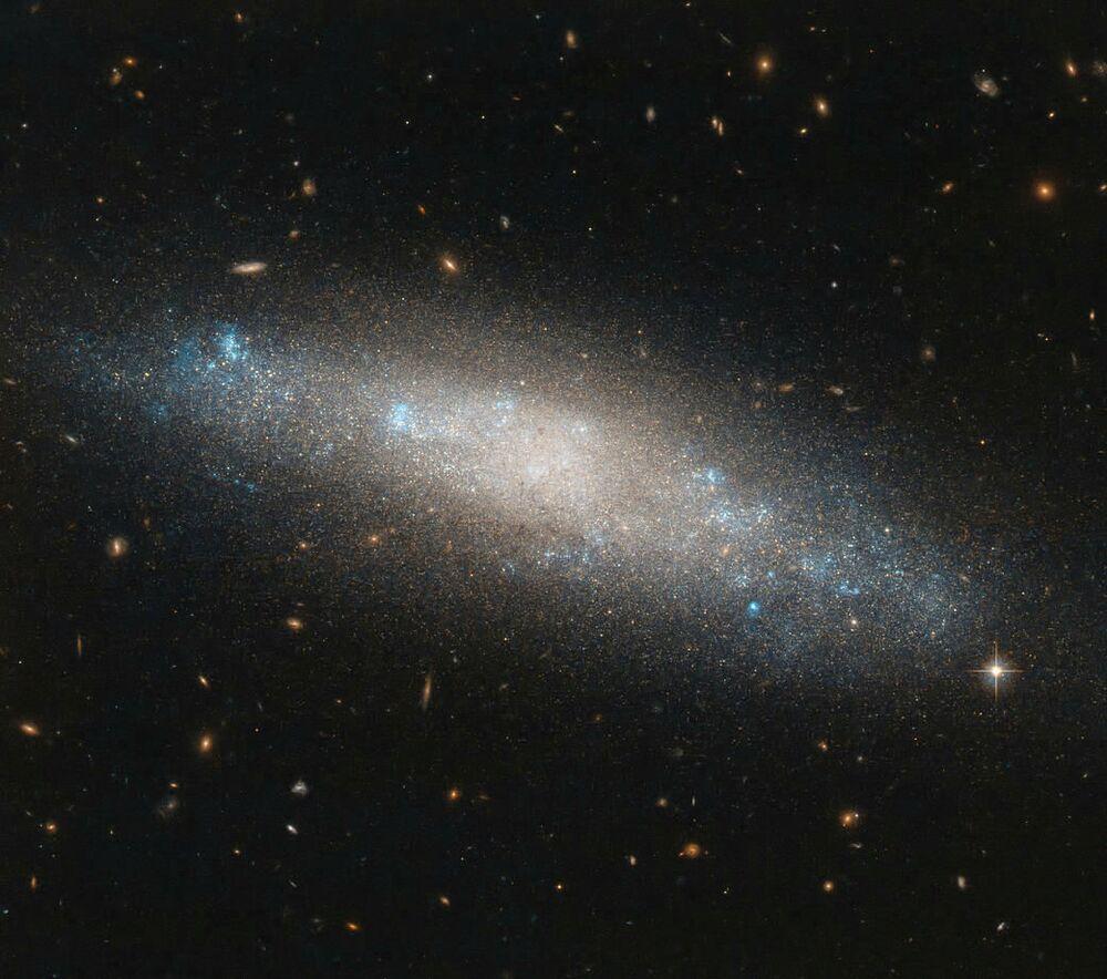 Veronica'nın Saçları Takımyıldızı'nda bulunan  NGC 4455 isimli spiral galaksi.