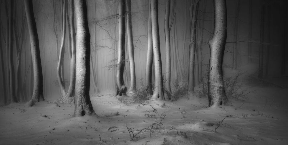 Yarışmanın Kar ve Buz Ödülü kategorisinde birincilik kazanan Bulgar fotoğrafçı Veselin Atanasov'un çalışması.