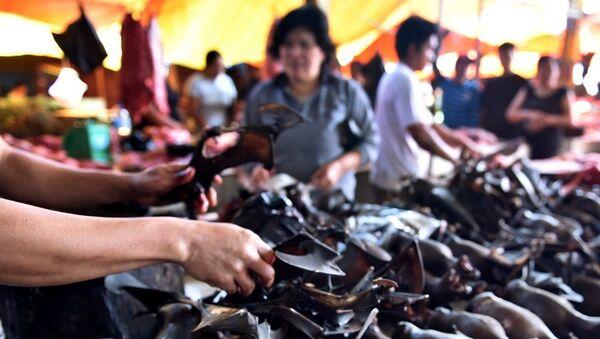 Koronavirüs salgınına rağmen yarasa eti Endonezya'da popüler - Sputnik Türkiye