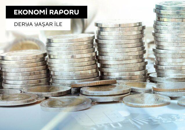 Ekonomi raporu