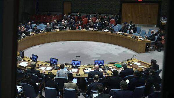 Birleşmiş Milletler Güvenlik Konseyi - Sputnik Türkiye