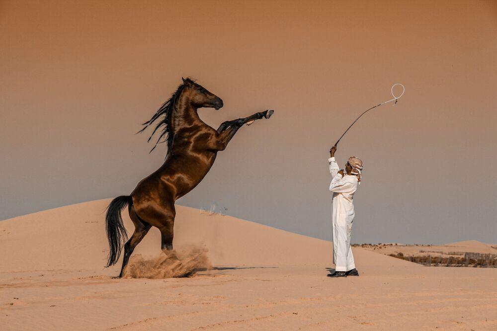 2020 Sony Dünya Fotoğrafçılık Ödülleri'nde Suudi Arabistan Ulusal Ödülü'nü kazanan fotoğrafçı Abbas Alkhamis'in Horse Motion görüntüsü.