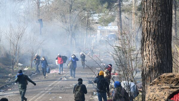 Edirne-sınır-sığınmacı-mülteci - Sputnik Türkiye