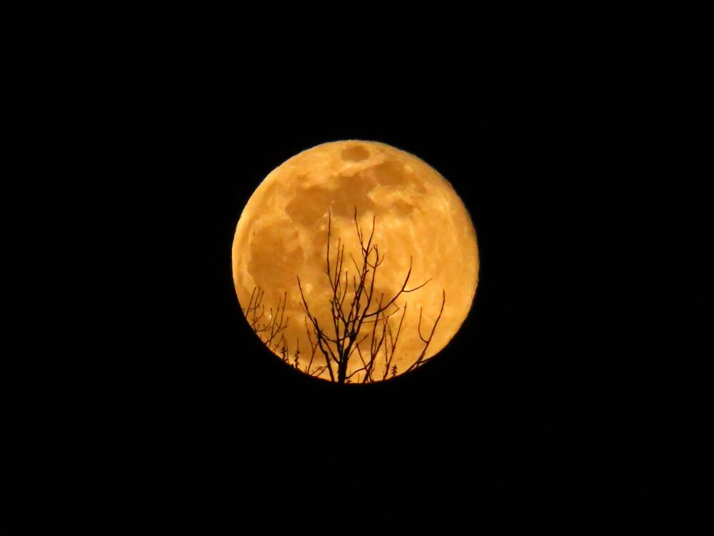 Süper Ay'ın Washington'daki objektiflere takılan görüntüsü.