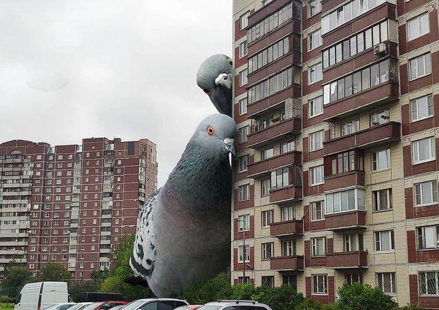 St. Petersburg'lu fotoğrafçı Vadim Solovyev, sıradan kent görüntülerine dev kuş, kelebek, dinozor ve canavar fotoğraflarını ekleyerek  bilim kurgu filmlerindeki sahneleri aratmayan görselleri yaratıyor.