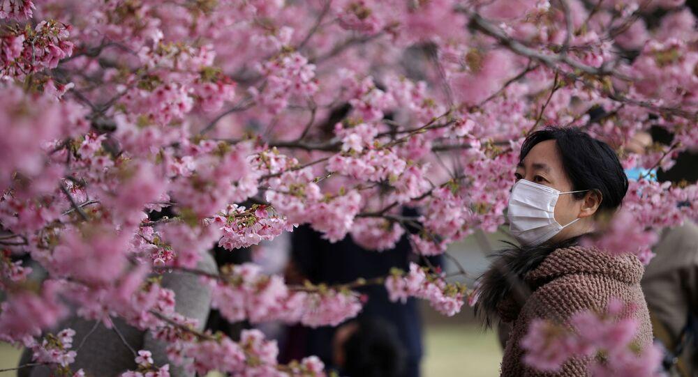 Japonya Meteoroloji Ajansı, başkent Tokyo'da yapılan gözlemlerin başından bu yana kiraz çiçekleri 'sakura'ların hiç olmadığı kadar erken açıldığını duyurdu.