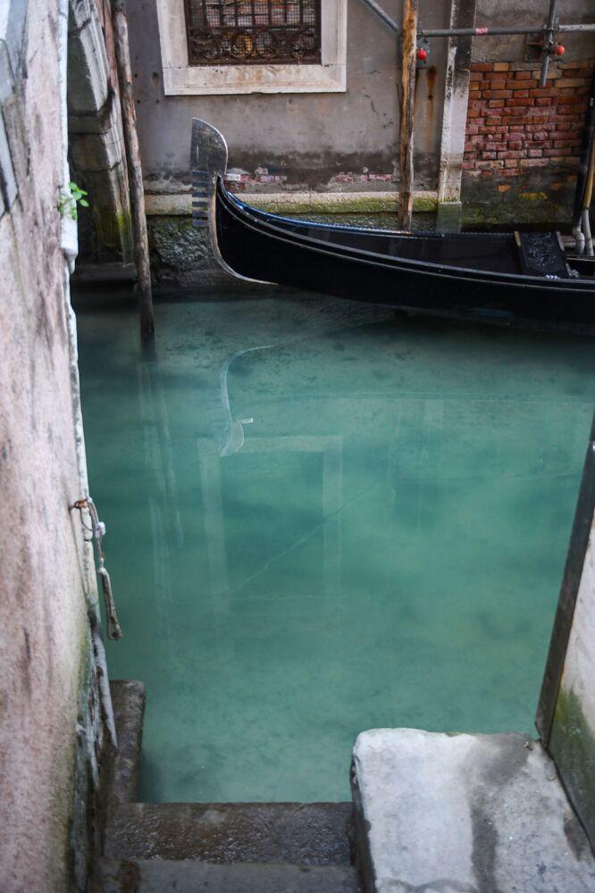 Karantina önlemleri sonucu suları berraklaşan  Venedik'ten bir kare
