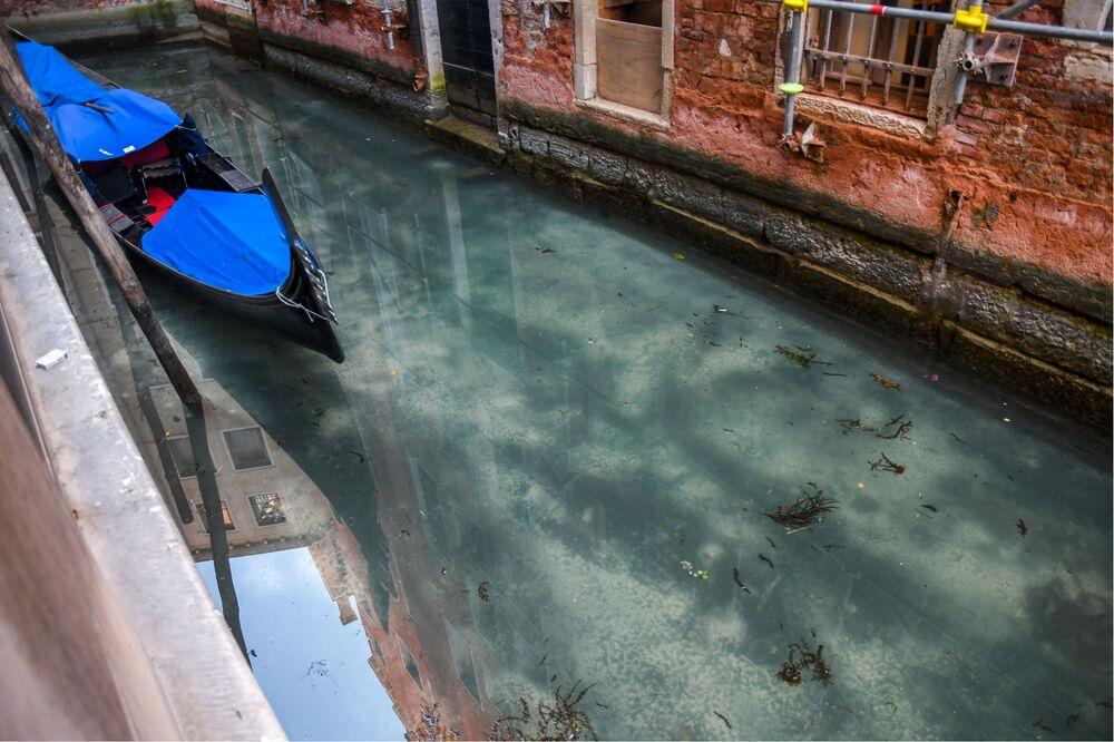 Ülkenin en popüler şehirlerinden biri olan Venedik'te suyun alışılmadık derecede berrak gözükmesi, sosyal medyada viral oldu.