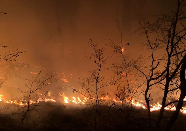 İzmir'in Menemen ilçesinde çıkan yangında, yaklaşık 1 hektar ormanlık alan zarar gördü.
