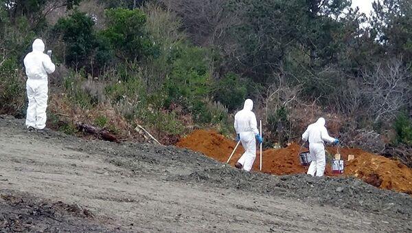 Beykoz, mezarlık, İBB, koronavirüs - Sputnik Türkiye