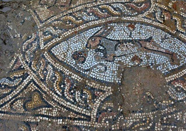 Antalya'nın Manavgat ilçesinde, tarihi Side Antik Kenti'nde koruma amaçlı imar planı kapsamında yapılan temel kazılarında Roma dönemine ait çeşitli hayvan figürlerinin yer aldığı mozaikler ve kilise kalıntısı bulundu.