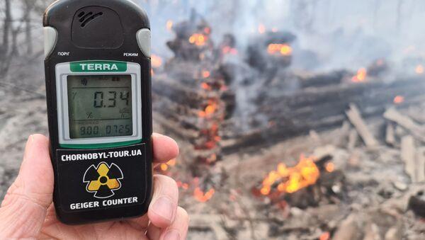 Çernobil'de çıkan orman yangın sonucu radyasyon seviyesi 16.5 kat arttı - Sputnik Türkiye
