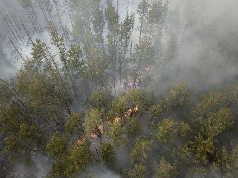 Üç gün önce başlayan yangın 100 hektarlık ormanlık alanı kaplarken bunun 20 hektarlık kısmı, patlama sonrası yasaklı bölge ilan edilen Çernobil'de yer alıyor.