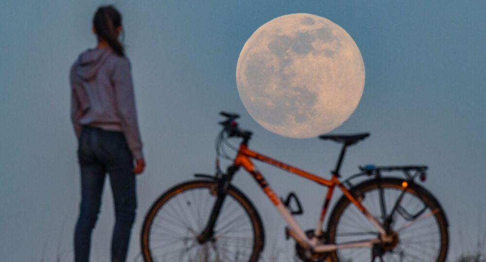Uzmanlara göre Süper Ay'a bakmak için ekstra bir korumaya ihtiyaç yok.  Fotoğrafta: Almanya'nın Sieversdorf kentinde Süper Pembe Ay'ı izleyen  genç kadın.