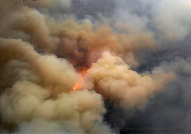 Yangının nedenleri konusunda üç ihtimal üzerinde duruluyor. Bunlardan biri komşu il olan Jitomir ilindeki ağaçlık alanlardaki yangının sıçraması, ikincisi bölgedeki elektrik hatlarından kuru otlara kıvılcım sıçraması, üçüncüsü ise kundaklama.