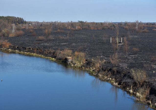 Yangında, büyük kısmı nükleer felaketin ardından tahliye edilmiş olan 12 köyün, mezarlıkların ve geniş ağaçlık alanların yandığı bildirildi.