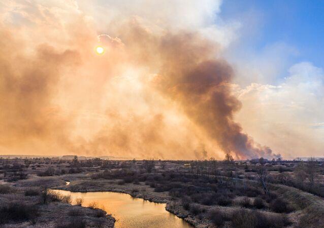 Ukrayna'nın Çernobil bölgesindeki orman yangını, 4 Nisan tarihinde başlamasına ve yürütülen yoğun çalışmalara rağmen henüz söndürülemedi.