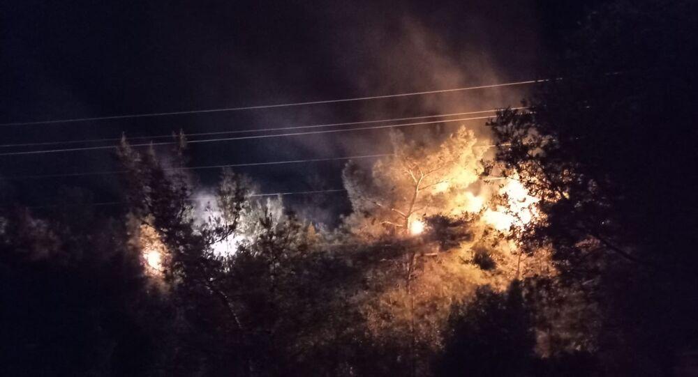 İzmir'in Bornova ilçesinde bulunan ormanlık olanda yüksek gerilim tellerinin koparak ağaçların üzerine düşmesi sonucu yangın çıktı. Yangın, itfaiye ekiplerince kısa sürede söndürüldü.