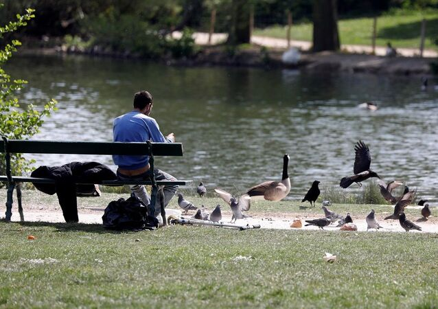 A man feeds animals in the Bois de Vincennes, amid the coronavirus disease (COVID-19) outbreak in Paris, France, April 20, 2020.  REUTERS/Charles Platiau