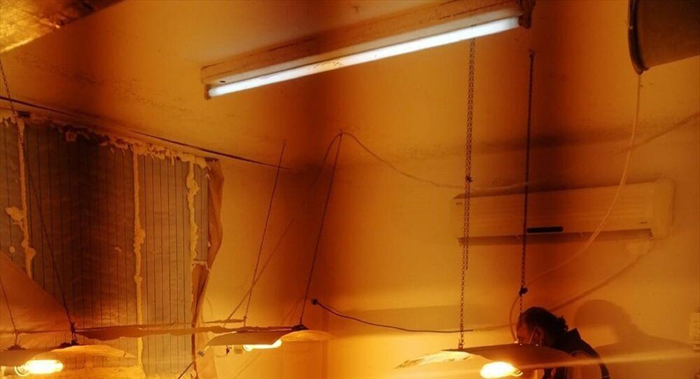 Adana'daki uyuşturucu operasyonlarında bahçede ve seraya çevrilen bir evin odasında Hint keneviri yetiştiren iki şüpheli yakalandı.